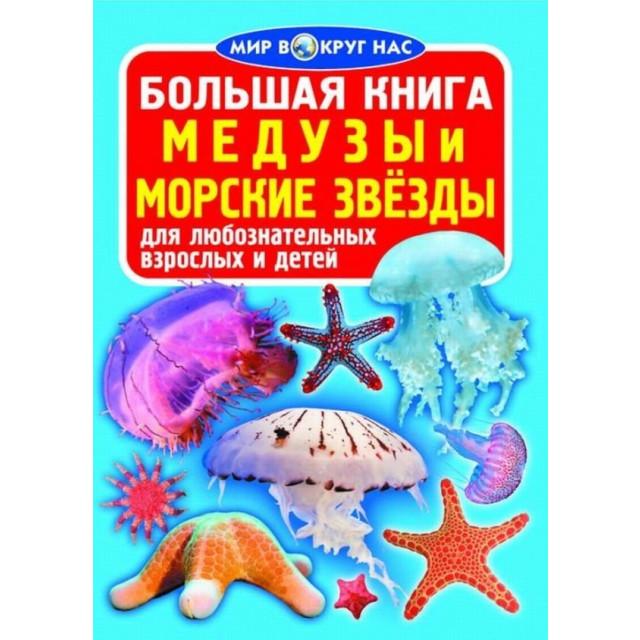 Большая книга. Медузы, морские звезды для любознательных мальчиков и девочек (больш,м)