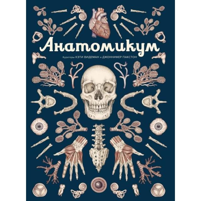 Анатомикум (кураторы К. Видеман и Д. Пакстон)