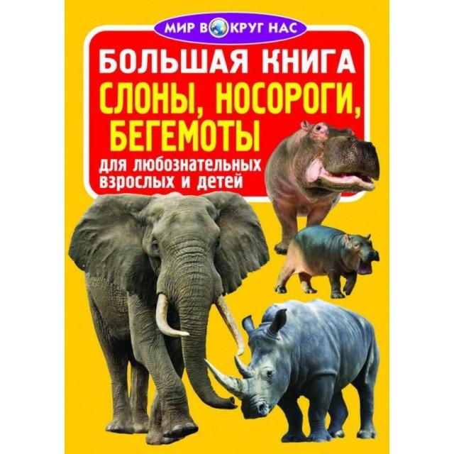 Большая книга. Слоны, носороги, бегемоты для любознательных взрослых и детей (больш,м)
