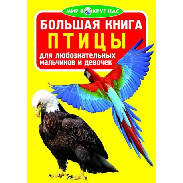 Большая книга. Птицы для любознательных мальчиков и девочек